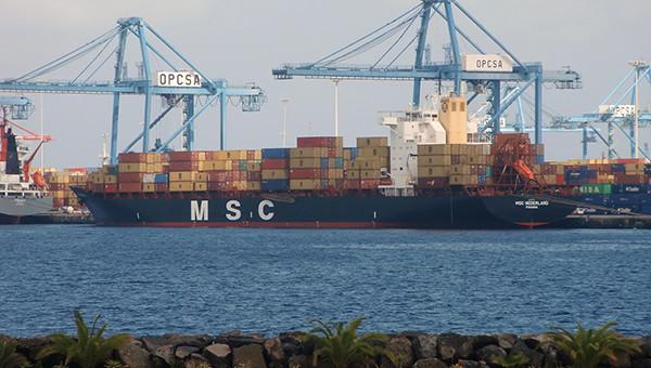 MSC garante 100% do terminal de contentores de Las Palmas