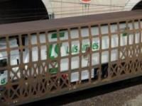 Tráfego de camiões no Eurotunnel estabiliza