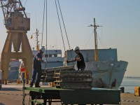 Estivadores espanhóis forçam acordos unilaterais com operadores