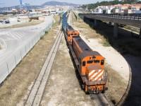 Comboios em alta nos portos nacionais