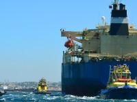 Sector marítimo-portuário apresenta-se em Roterdão