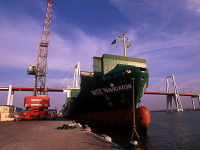 """FNSTP """"entra"""" no porto da Figueira da Foz"""
