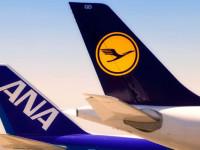 Lufthansa Cargo e ANA estendem parceria à Europa