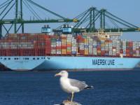 2M alinha navios de 19000 TEU no Ásia-Med