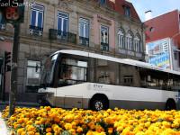 Viseu e Dão Lafões reduz preços dos transportes