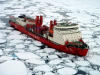 Cosco pondera serviço Ásia-Europa pelo Ártico