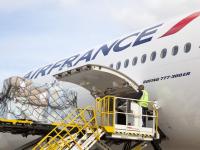 Air-France KLM com ligeira melhoria na carga