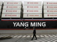 Yang Ming pode ser a próxima Hanjin, avisa a Drewry