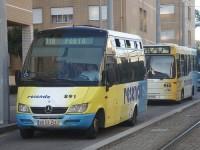 Resende obrigada a substituir mais oito autocarros