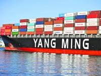 Yang Ming planeia encomendar 20 porta-contentores