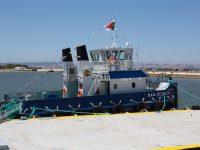 Porto de Castanheira do Ribatejo operacional no início de 2019