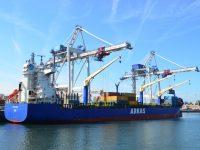 Tarros, Arkas e CMA CGM juntas no Mediterrâneo