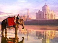 AEP abre a Índia às empresas portuguesas