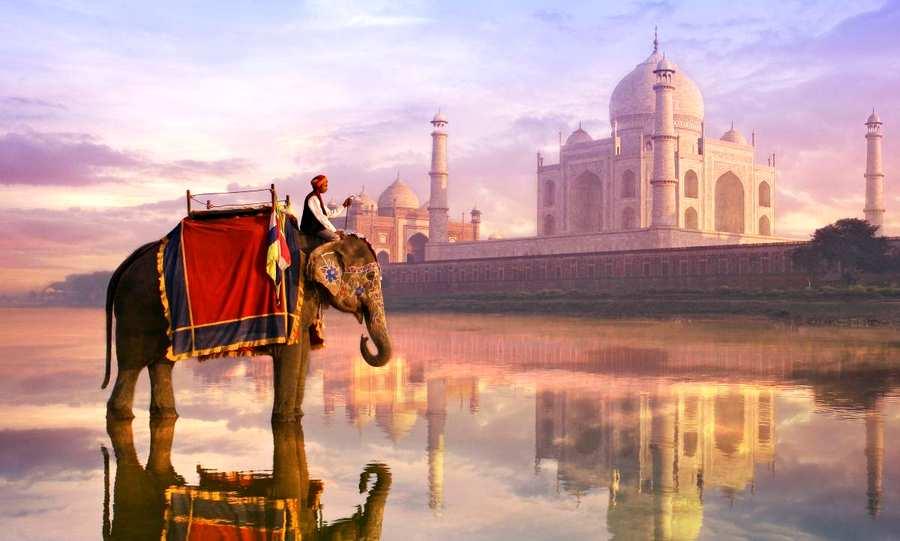 AEP realizou missão empresarial à Índia