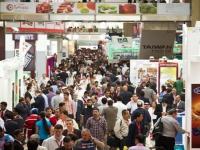 AEP com empresas nacionais no Dubai