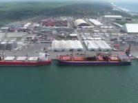 Yilport investe em Puerto Quetzal (Guatemala)