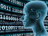 """Roterdão usa """"machine learning"""" para prever escalas"""