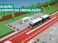 Metrobus do Mondego começará a circular em 2021