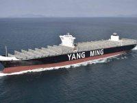 Yang Ming contrata novo quarteto de 11 mil TEU