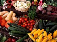 Exportações do agro-alimentar cresceram
