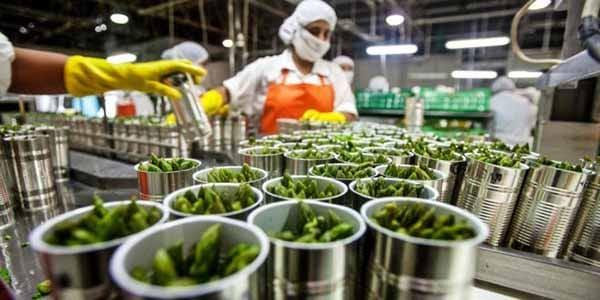 Agro-alimentar exportou 7,1 mil milhões de euros