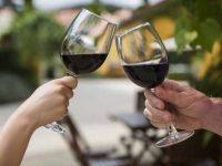 ViniPortugal promoveu vinhos no Brasil