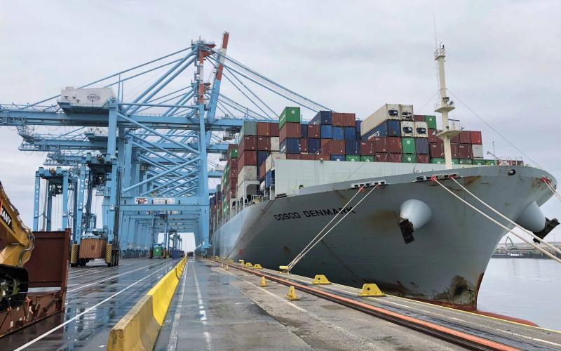 Alphaliner: Cosco desenvolve Zeebrugge como hub
