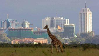 CCIP promove missão ao Quénia