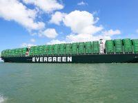 Evergreen pretende 11 navios de 23 mil TEU