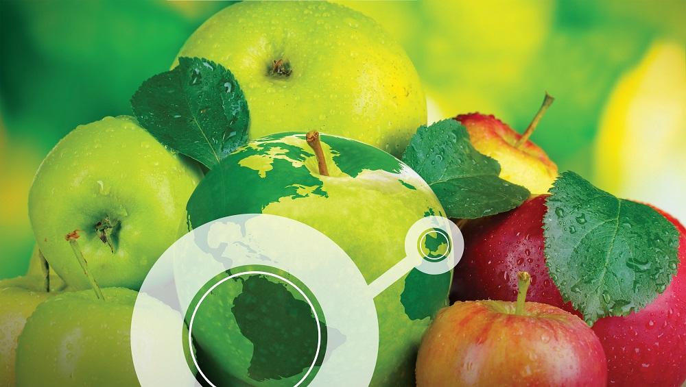 Transitex participa na Fruit Attraction desde 2013