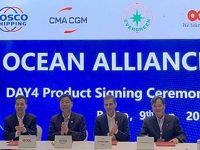 Ocean Alliance renova oferta