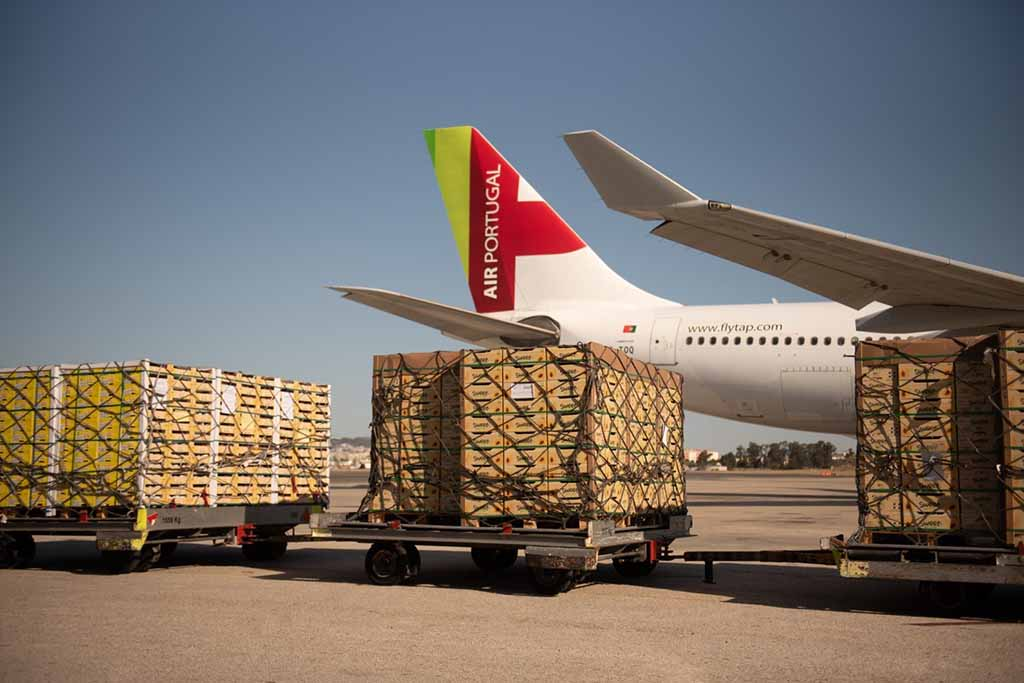 TAP Cargo cresceu 17% nos últimos 12 meses