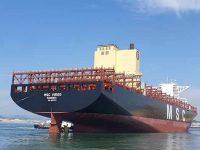 É da MSC o maior navio registado no MAR